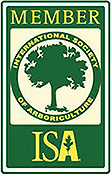 Ray Williamson Tree